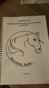 workshop paardenwelzijn en diervriendelijk paardrijden